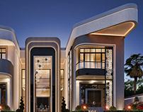 Fantasy Modern Style Villa