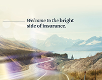 Star Insurance Specialists Brand Development