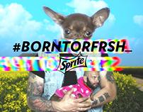 #BornToRFRSH · Sprite