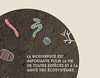 Soil Preservation / La préservation des sols