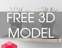 Model Plant for free