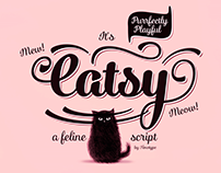 Catsy Type Family