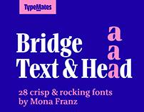 Bridge Text & Head type system by Mona Franz