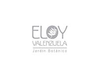 ELOY VALENZUELA