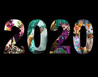 Artists Captured During 2020