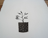 Jardincito Negro