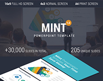 MINT-Presentation Template