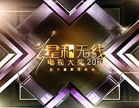 Starhub TVBS 2013 Awards