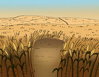 Cornfield Background