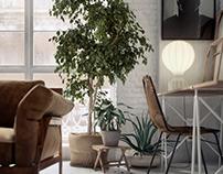 B Plant