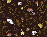 Cabinet of Curiosity Pattern Collection