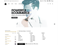 Seller eCommerce WordPress Theme - Shop With Filter