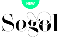 Segol Typeface | Ultimate Font For Fashion Typography