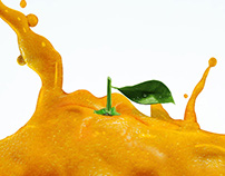 Jumex, Liquid Fruits (spec)