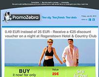 Diseño mailing PromoZebra