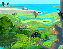 Zoo Aquarium Guidebook for Teens