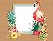 Flamingo Frame