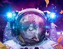 DK space brigades