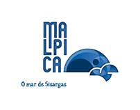 Malpica, mar de Sisargas