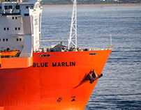 Dockwise Shipping's Blue Marlin
