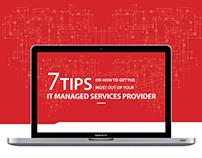 Infographic 8 - IT Management