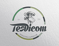 Tesvicom Logo creation