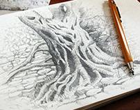 Summer sketches 2018