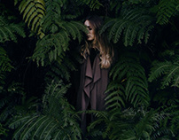 Forest Anaga