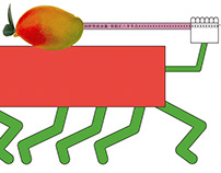 果蔬的自白。Fruits and Vegetables' Self-narration