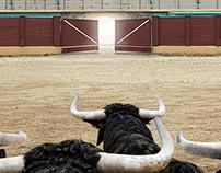 Total Digest - Bulls