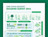 Domestic Occupier Survey 2016 - Infographics