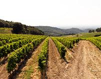 Provence + Food + Wine = Summer