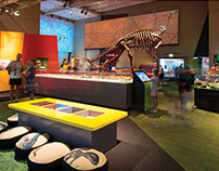 Queensland Museum (Experience Design and Publications)
