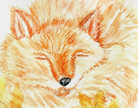 Cute orange fox