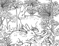 Coloring Book - Woodland Creatures