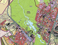 Master Plan. Gatchina city
