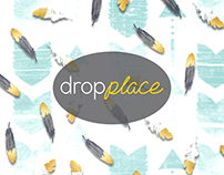 DropPlace