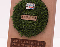 Cricket-themed Plaque