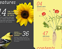 Birds & Blooms - Magazine Redesign