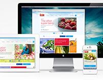 Dole.com Redesign