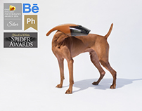 vacuum dog