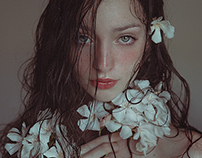 PHOTOTROPISM & the skin of flowers