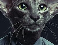 Cat Beings