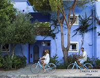 Bluegr Hotels & Resorts | Content Design and management
