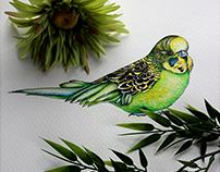 Birds in Watercolor 2