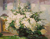 Куст жасмина   Jasmine bush