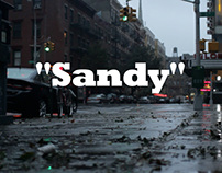 SandyNYC 2012 - Short Doc.