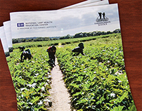 Farmworkers Brief: The Fenway Institute