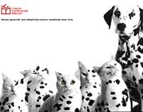 Türkiye Yayıncılar Birliği / Print Ad