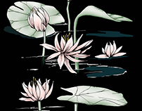 inked water lillies : digital color